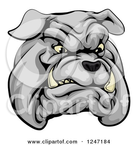 Clipart of a Sports Bulldog Mascot Face - Royalty Free Vector Illustration by AtStockIllustration