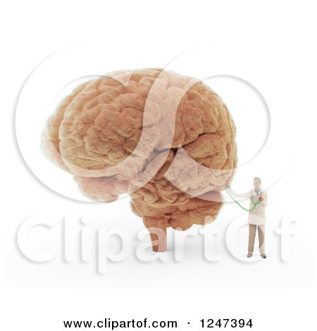 Clipart of a 3d Male Doctor Examining a Brain - Royalty Free Illustration by Mopic