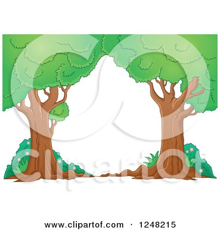 Clipart of Mature Trees and Shrubs - Royalty Free Vector Illustration by visekart