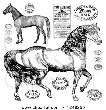 Clipart of Black and White Vintage Horses and Post Stamps - Royalty Free Vector Illustration by BestVector