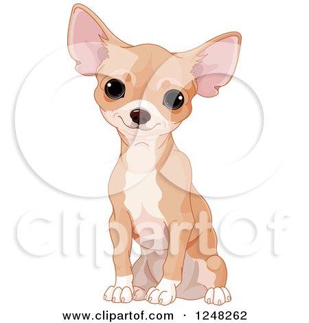 Cute Tan Chihuahua Dog Sitting Posters, Art Prints
