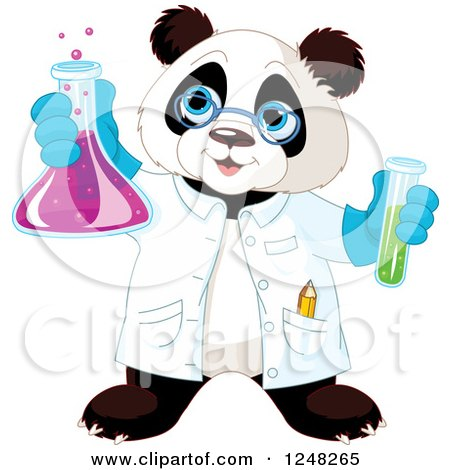 Clipart of a Scientist Panda Holding up a Flask - Royalty Free Vector Illustration by Pushkin
