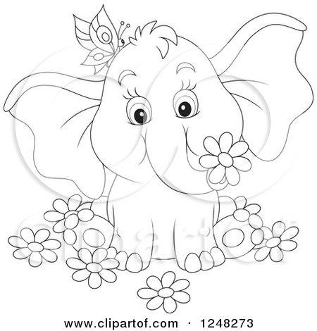 Elephant Holding A Flower Coloring Page : Royalty Free Elephant Illustrations by Alex Bannykh Page 1