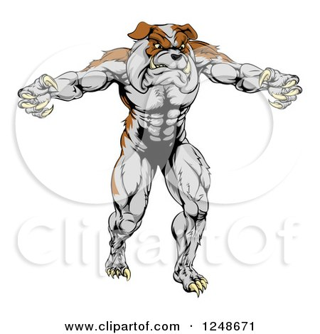 Clipart of a Muscular Bulldog Mascot Standing Upright - Royalty Free Vector Illustration by AtStockIllustration