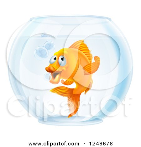 Clipart of a Goldfish Gesturing to Follow in a Bowl - Royalty Free Vector Illustration by AtStockIllustration