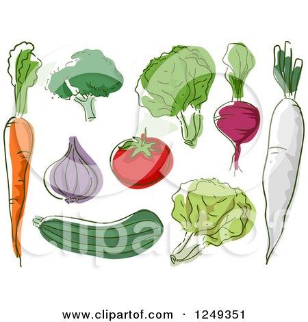 Sketched Healthy Vegetables Posters, Art Prints