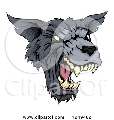 Clipart of a Growling Fierce Wolf Mascot Head - Royalty Free Vector Illustration by AtStockIllustration