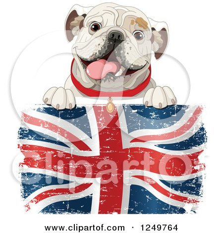Clipart of a Cute Bulldog Panting over a Distressed British Flag - Royalty Free Vector Illustration by Pushkin