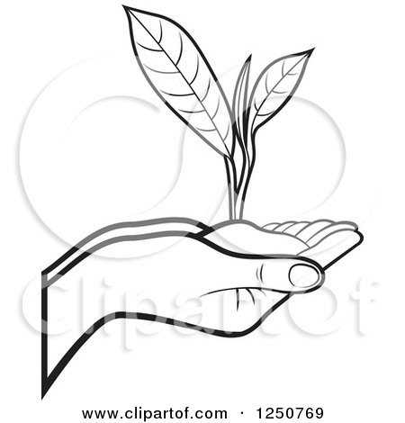 Clipart of black and white hands holding a tea leaf plant and soil clipart of black and white hands holding a tea leaf plant and soil royalty free vector illustration by lal perera thecheapjerseys Image collections