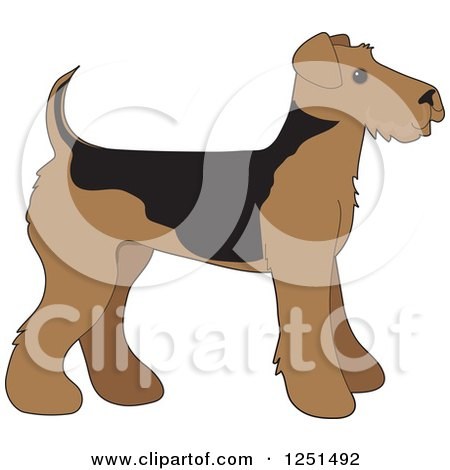 Clipart of a Cute Airedale Terrier Puppy Dog in Profile - Royalty Free Vector Illustration by Maria Bell