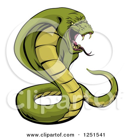 Vemomous and Defensive Green Cobra Snake Preparing to ...