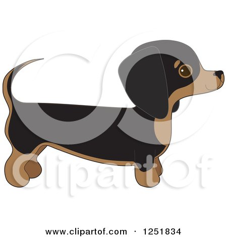 Clipart of a Cute Dachshund Dog in Profile - Royalty Free Vector Illustration by Maria Bell