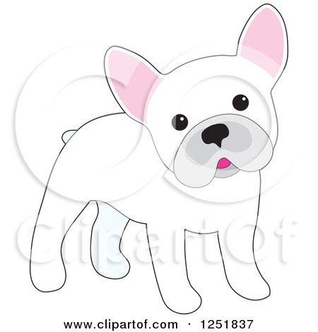 Clipart of a Cute White French Bulldog Cocking Its Head - Royalty Free Vector Illustration by Maria Bell