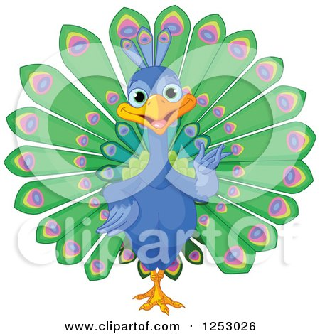 Clipart of a Cute Peacock Bird Presenting - Royalty Free Vector Illustration by Pushkin