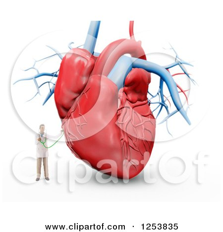 Clipart of a 3d Tiny Male Doctor and Giant Human Heart - Royalty Free Illustration by Mopic