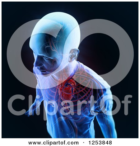 Clipart of a 3d Xray Man with a Visible Circulatory System, on Black - Royalty Free Illustration by Mopic