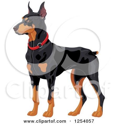 Clipart of an Alert Doberman Pinscher Guard Dog - Royalty Free Vector Illustration by Pushkin