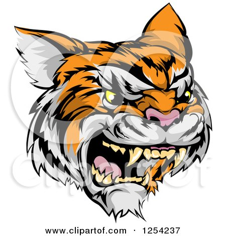 Clipart of a Roaring Angry Tiger Mascot Head - Royalty Free Vector Illustration by AtStockIllustration