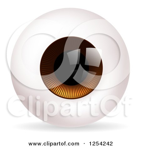 Clipart of a Brown Eyeball - Royalty Free Vector Illustration by AtStockIllustration