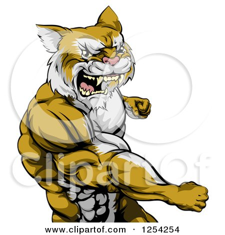Clipart of a Punching Muscular Cougar Man Mascot - Royalty Free Vector Illustration by AtStockIllustration
