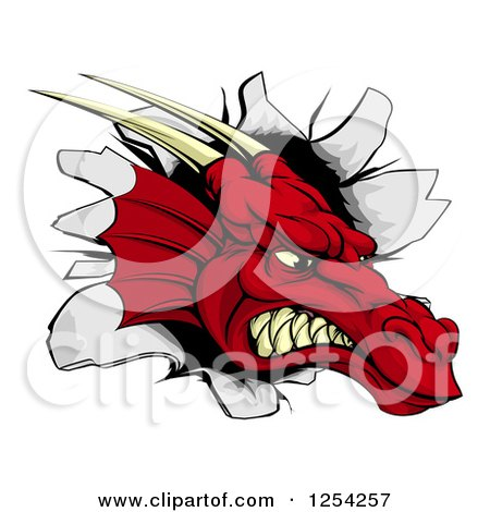 Clipart of a Snarling Fierce Red Dragon Mascot Head Breaking Through a Wall - Royalty Free Vector Illustration by AtStockIllustration