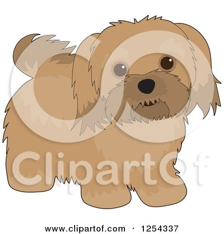 Clipart of a Cute Havanese Dog - Royalty Free Vector Illustration by Maria Bell