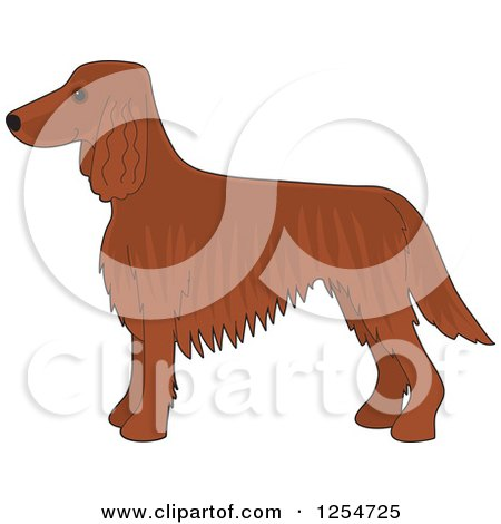 Cartoon of a Cute Irish Setter Dog in Profile - Royalty Free Vector Clipart by Maria Bell