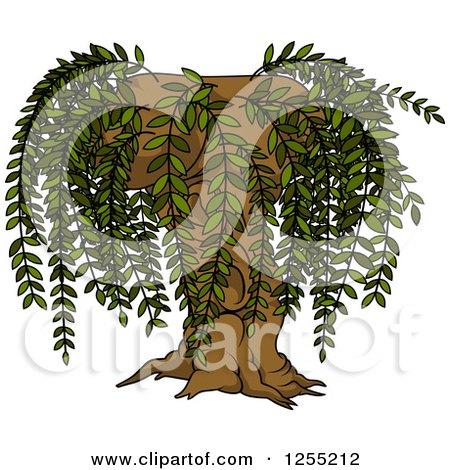 Royalty-Free (RF) Willow Tree Clipart, Illustrations ...