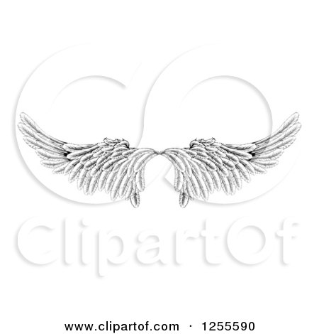 Clipart of a Pair of Black and White Angel or Eagle Wings - Royalty Free Vector Illustration by AtStockIllustration