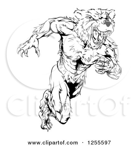 Clipart of a Black and White Muscular Bear Man Running Upright - Royalty Free Vector Illustration by AtStockIllustration