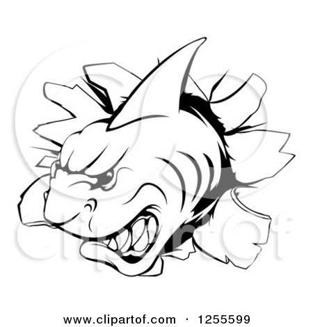 Clipart of a Black and White Aggressive Shark Breaking Through a Wall - Royalty Free Vector Illustration by AtStockIllustration