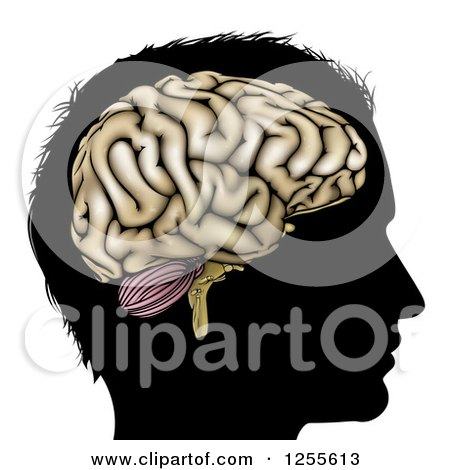 Clipart of a Silhouetted Man's Head with a Visual Brain - Royalty Free Vector Illustration by AtStockIllustration