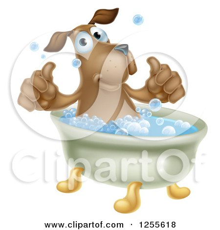 Clipart of a Pleased Brown Dog Bathing and Holding Two Thumbs up - Royalty Free Vector Illustration by AtStockIllustration
