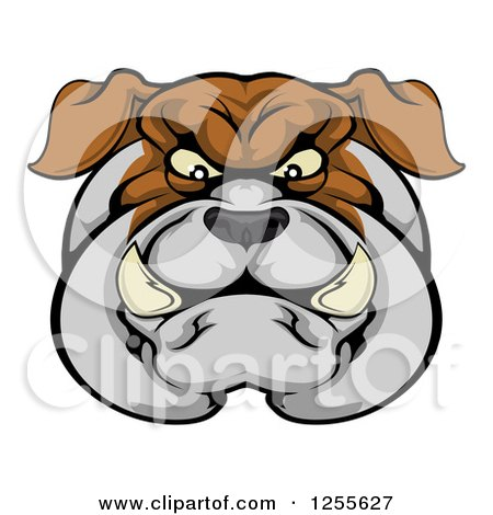 Clipart of a Tough Bulldog Face - Royalty Free Vector Illustration by AtStockIllustration