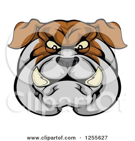 Tough Bulldog Face Posters, Art Prints