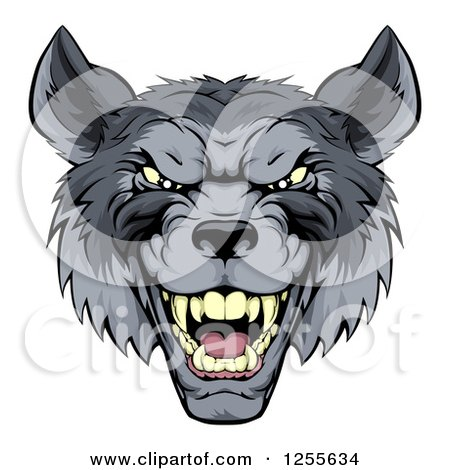 Clipart of a Snarling Gray Wolf Mascot Head - Royalty Free Vector Illustration by AtStockIllustration