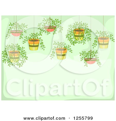 Clipart of a Green Background with Hanging Potted Plants - Royalty Free Vector Illustration by BNP Design Studio