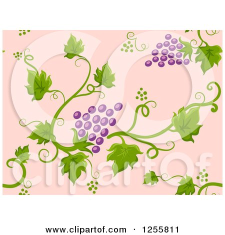 Clipart of a Seamless Background Pattern of Purple Grapes and Vines on Pink - Royalty Free Vector Illustration by BNP Design Studio