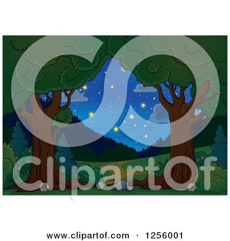 Clipart of a Trees Framing a Path and Night Sky - Royalty Free Vector Illustration by visekart
