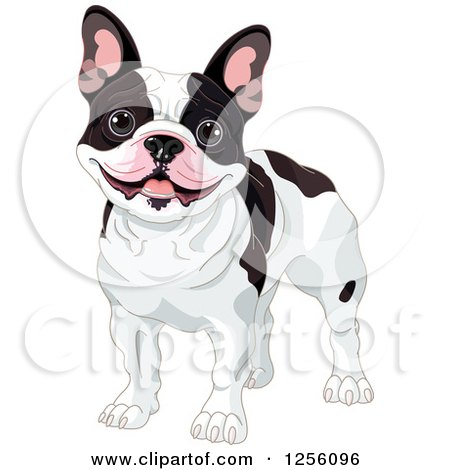 Clipart of a Cute Black and White Happy French Bulldog - Royalty Free Vector Illustration by Pushkin