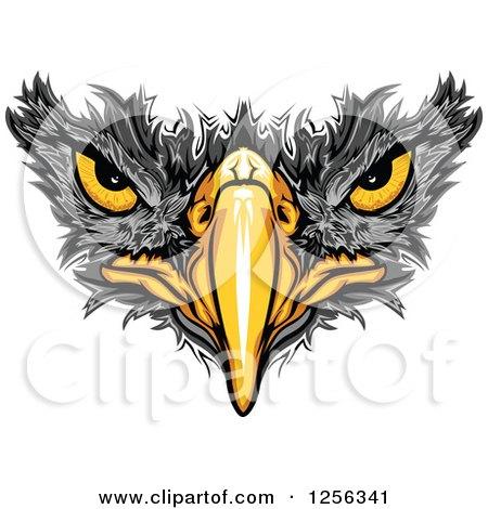 Black Hawk Beak and Eyes Posters, Art Prints