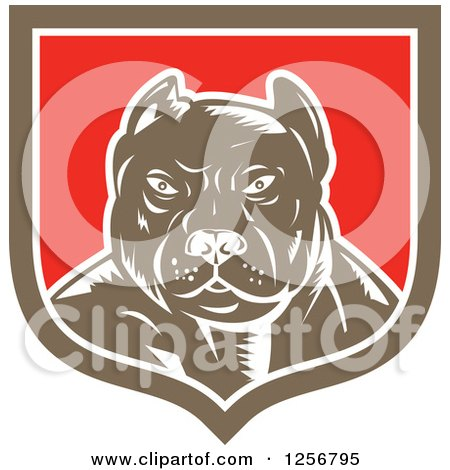 Clipart of a Retro Woodcut Tough Pitbull Guard Dog in a White Red and Brown Shield - Royalty Free Vector Illustration by patrimonio