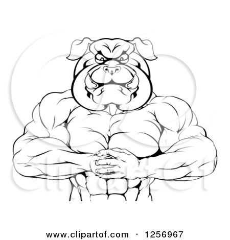 Clipart of a Black and White Muscular Bulldog Man Punching One Fist into a Palm - Royalty Free Vector Illustration by AtStockIllustration