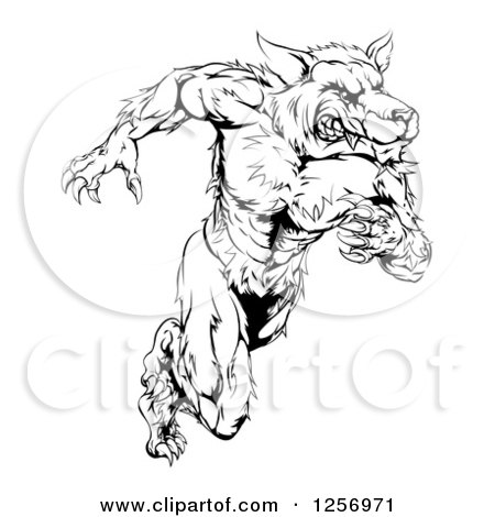Clipart of a Black and White Muscular Wolf Man Running Upright - Royalty Free Vector Illustration by AtStockIllustration