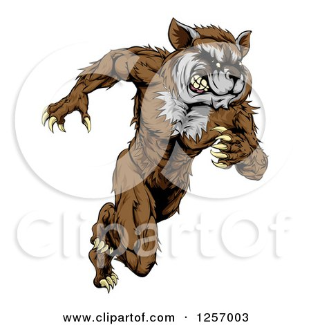 Clipart of a Muscular Raccoon Man Mascot Running Upright - Royalty Free Vector Illustration by AtStockIllustration