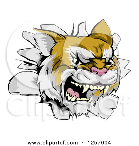 Clipart of a Wild Cat Breaking Through a Wall - Royalty Free Vector Illustration by AtStockIllustration