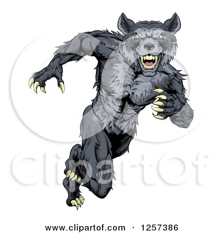 Clipart of a Gray Muscular Wolf Man Sprinting or Running Upright - Royalty Free Vector Illustration by AtStockIllustration