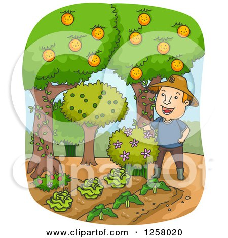 Clipart of a Happy White Farmer Man with Fruit Trees and Gardens - Royalty Free Vector Illustration by BNP Design Studio