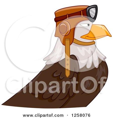 Bald Eagle Pilot in Profile Posters, Art Prints