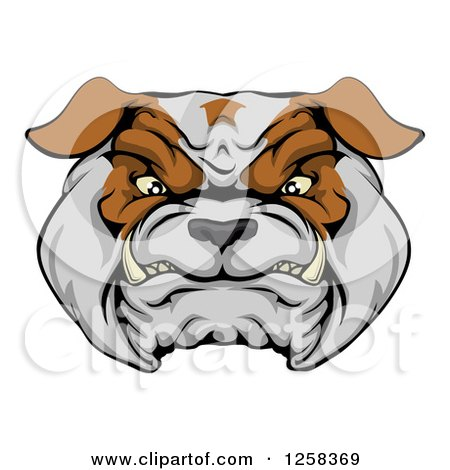 Clipart of a Growling Aggressive Bulldog Face - Royalty Free Vector Illustration by AtStockIllustration